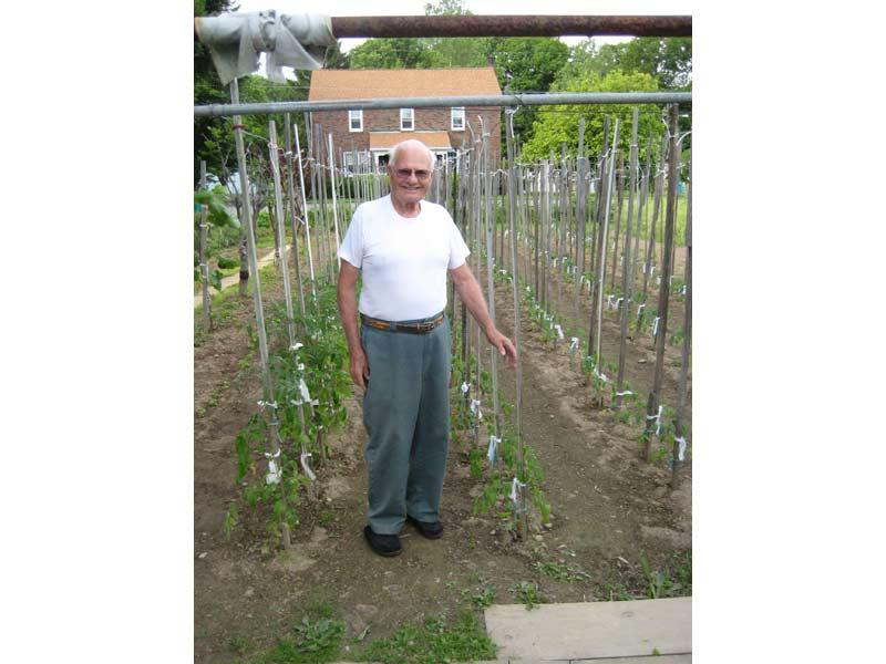 Guido Corsi mostra orgoglioso le piantine del suo orto